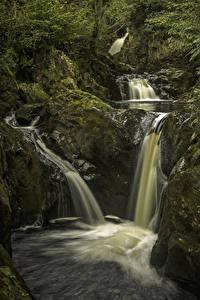Картинки Великобритания Водопады Скала Мох Yorkshire Природа
