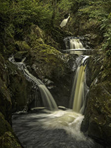 Картинки Великобритания Водопады Скала Мох Yorkshire