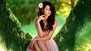 Картинка Сидящие Красивая Брюнетка молодая женщина