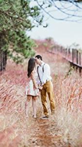Фотография Влюбленные пары Мужчины Трава Тропа Двое Целует Свидании молодая женщина