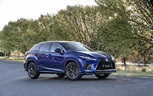 Обои для рабочего стола Лексус Синие Металлик 2019 RX 300 F SPORT машины
