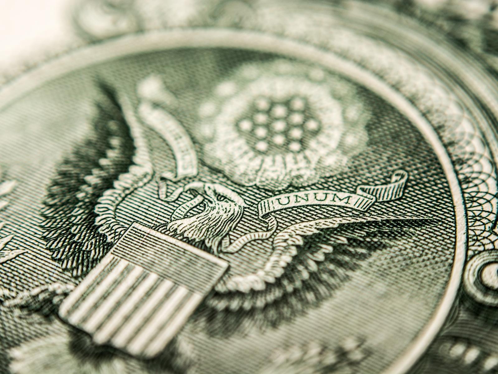 Фотография орел Доллары Макро вблизи 1600x1200 Орлы Макросъёмка Крупным планом