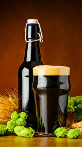 Обои Пиво Пшеница Хмель Бутылка Стакан Пена Колос Еда