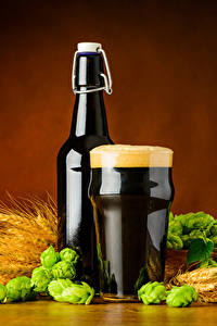 Обои Пиво Пшеница Хмель Бутылки Стакана Пене Колоски Еда