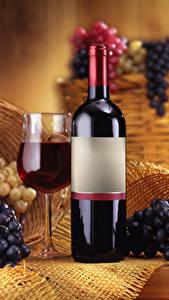 Фотография Вино Виноград Бокалы Бутылки Еда