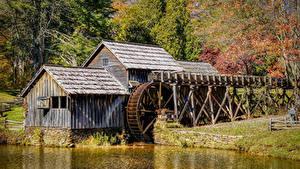 Фото Штаты Леса Осенние Мельница Mabry Mill Природа