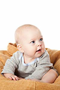 Фото Белым фоном Младенцы Смотрит