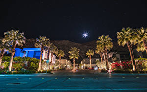 Фото США Здания Калифорния Анахайм Улица Ночные Пальмы Луна