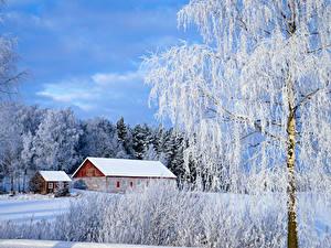 Фото Финляндия Дома Зимние Снеге Деревьев Paimio