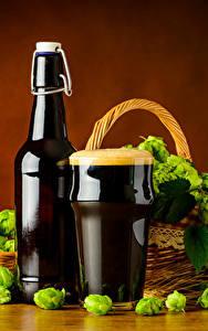 Картинки Пиво Хмель Бутылка Стакане Пеной Еда