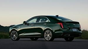 Обои Кадиллак Сбоку Седан Металлик Зеленая CT4, 2020 Автомобили