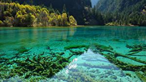 Картинка Китай Цзючжайгоу парк Парки Озеро