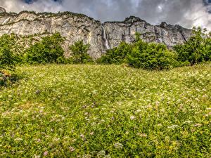 Фотография Швейцария Горы Водопады Альпы Трава Кусты