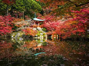 Картинки Япония Киото Парки Пруд Пагоды Осень Деревья Природа