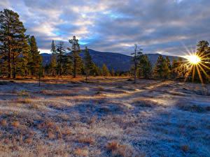 Обои Зима Рассветы и закаты Горы Деревья Трава Солнце