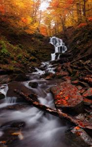 Обои Осенние Камень Ручей Лист Мхом Природа