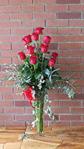 Фотографии Букеты Розы Стенка Красный Цветы