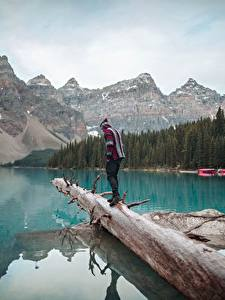 Фотографии Канада Озеро Гора Парки Банф Ствол дерева Путешественник Moraine Lake, Alberta Природа