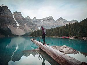Фотографии Канада Озеро Гора Парк Банф Ствол дерева Путешественник Moraine Lake, Alberta Природа