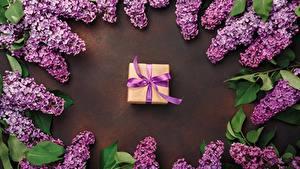 Фотография Сирень Подарки Фиолетовая Цветы