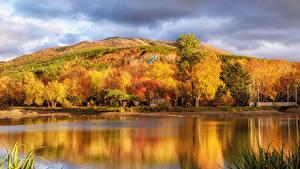 Картинка Россия Осенние Речка Холмы Деревья Sakhalin Природа