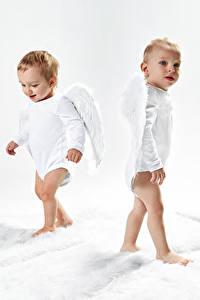 Картинка Ангелы Мальчишка Младенцы Два Крылья Взгляд