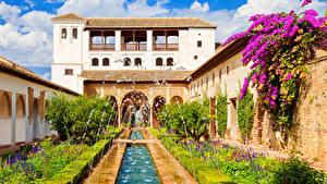 Картинки Испания Здания Фонтаны Бугенвиллия Дворец Кустов Alhambra de Granada Города