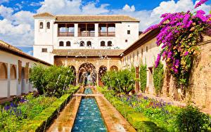 Картинки Испания Здания Фонтаны Бугенвиллия Дворец Кустов Alhambra de Granada город