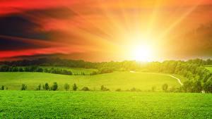 Картинка Пейзаж Рассветы и закаты Поля Небо Трава Солнца Природа