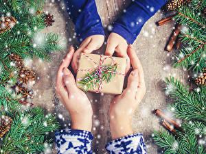 Обои Новый год Корица Руки Подарки Ветки Шишки Снег