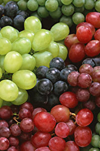Фотографии Виноград Вблизи Много Продукты питания