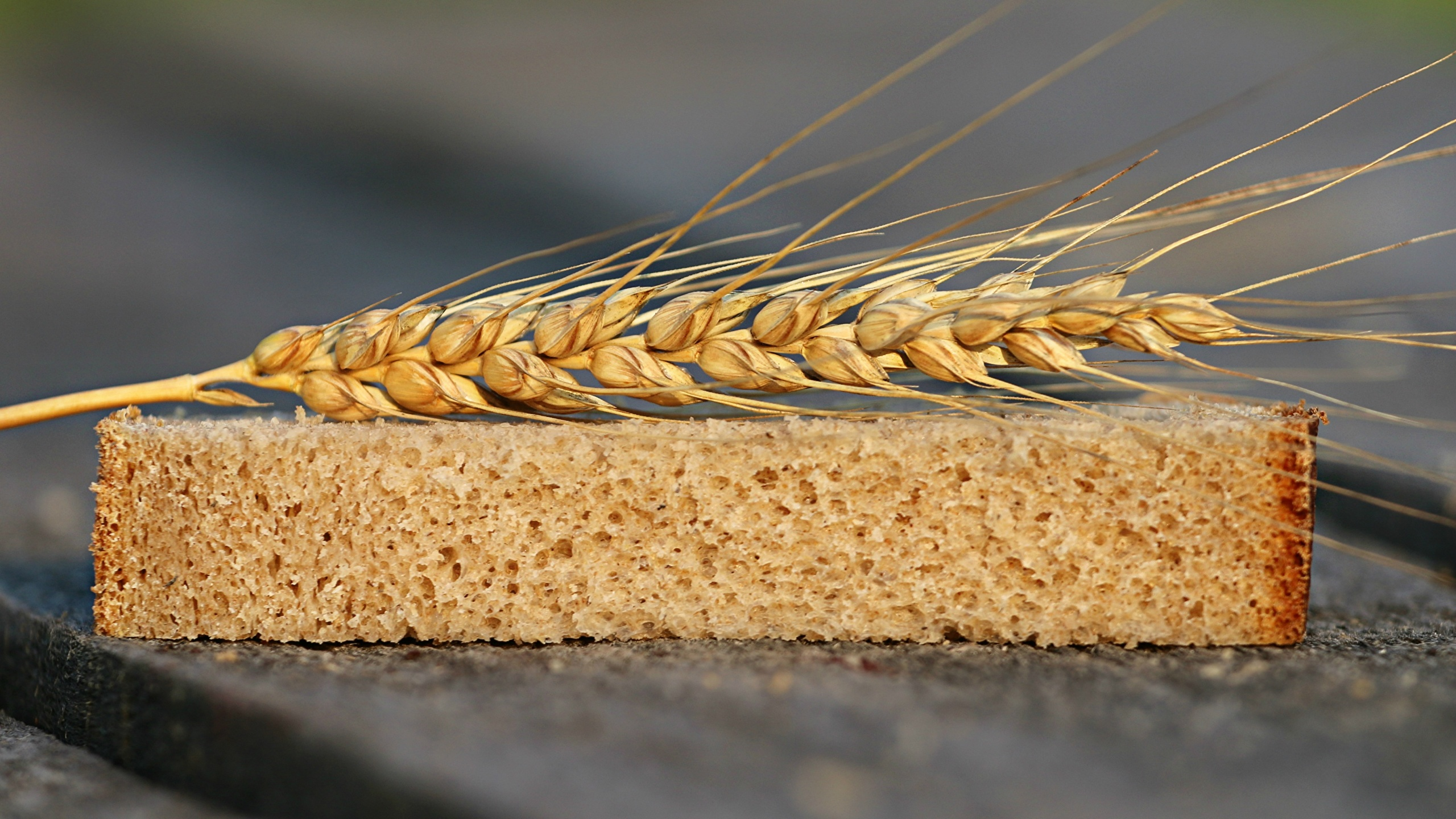 Картинка Пшеница Хлеб часть колосок Пища вблизи 2560x1440 Кусок Колос кусочки кусочек колосья колоски Еда Продукты питания Крупным планом