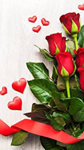 Обои Розы Белый фон Красных Сердца Ленточка Цветы