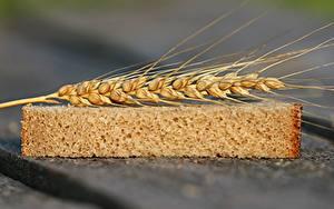 Картинка Пшеница Хлеб Вблизи Колосок Кусочки Еда