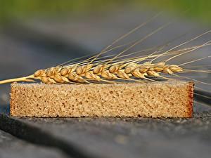 Картинка Пшеница Хлеб Вблизи Колос Часть