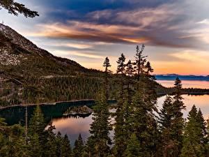 Фотографии Штаты Озеро Лес Горы Рассветы и закаты Калифорнии Lake Tahoe, Sierra Nevada
