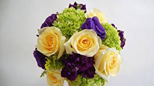 Обои Букеты Розы Лизантус Маттиола Гортензия Серый фон Цветы