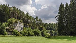 Обои Германия Леса Бавария Утес Кусты Траве Hollfeld Природа