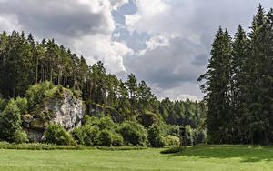 Обои Германия Леса Бавария Утес Кусты Трава Hollfeld Природа