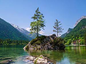 Обои Германия Гора Озеро Бавария Скале Деревья Berchtesgadener Land Природа