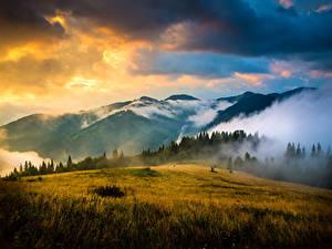 Фотография Украина Горы Рассветы и закаты Небо Пейзаж Карпаты Облачно Трава Природа