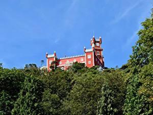 Фотографии Португалия Замки Парки Sintra, Park Sintra-Cascais Города