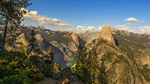Обои Штаты Парки Горы Камень Йосемити Ели Природа