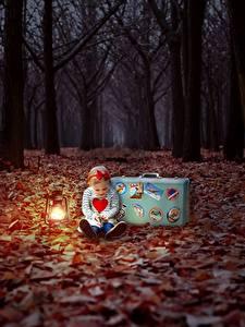 Картинки Осень Лес Вечер Листва Девочки Чемоданом Дети