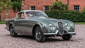 Фотографии Ягуар Винтаж Pininfarina Авто Купе 1954 XK120 SE Автомобили