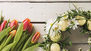 Картинка Праздники Пасха Тюльпаны Хризантемы Доски Яйцами Цветы