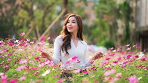 Фотографии Азиаты Космея Боке Поза Улыбка Шатенка Красивая молодые женщины