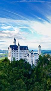 Фотография Нойшванштайн Горы Леса Замки Германия Скала Бавария Города