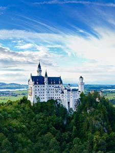 Фотография Нойшванштайн Гора Лес Замок Германия Скалы Бавария город
