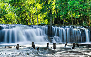 Фотография Тропический Парки Водопады Дерево Kulen National Park Cambodia